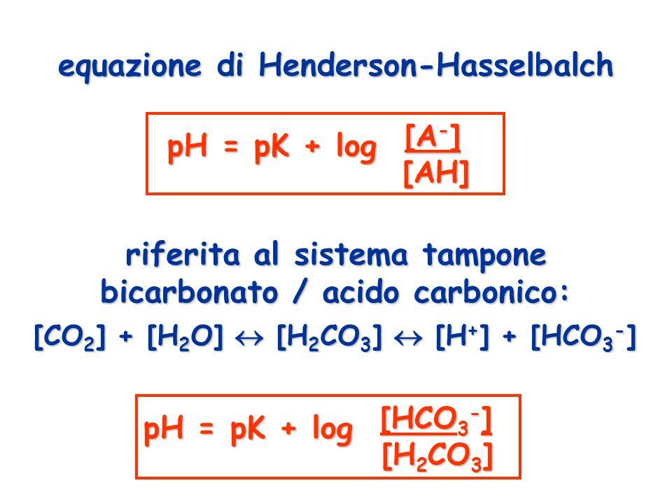 pH = pK + log [A-] pH = pK + log [HCO3-]
